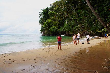 In punta uva, Costa Rica